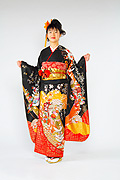 363 黒系 金彩、花車鶴と花の饗宴古典柄前面写真