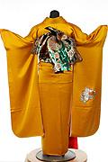 624 黄系 金茶花柄背面写真