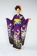661 紫系 赤紫蝶、花柄前面写真