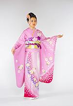 1454 ピンク系 淡いピンク大小の桜柄 サムネイル