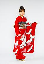 371 赤系 真赤地昇り鶴の饗宴古典柄 サムネイル