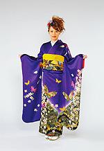 417 紺系 紺紫蝶、下がり藤柄 サムネイル
