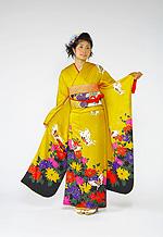 693 黄系 黄色菊柄 サムネイル